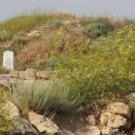 Памятник древней истории Крыма