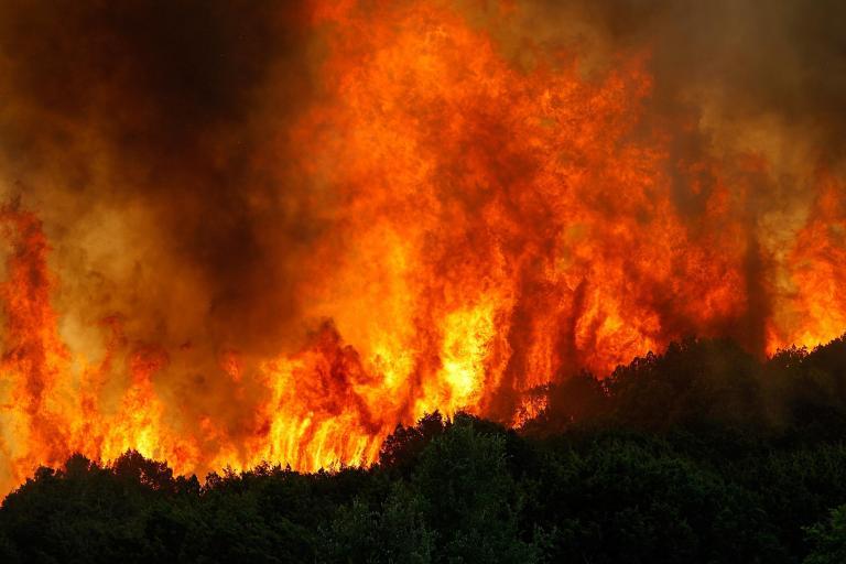 губительные пожары
